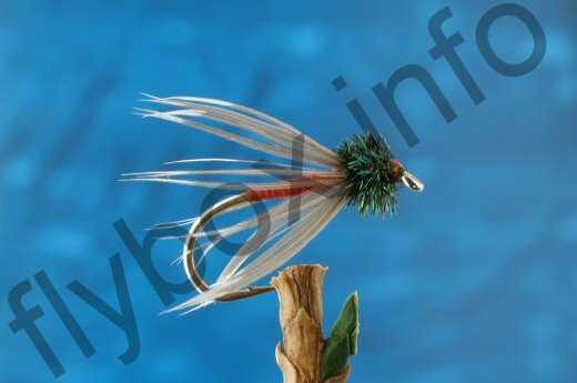 Light Spanish Needle
