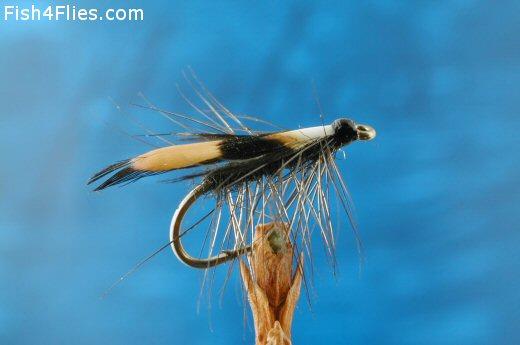 Fish4Flies Jassid