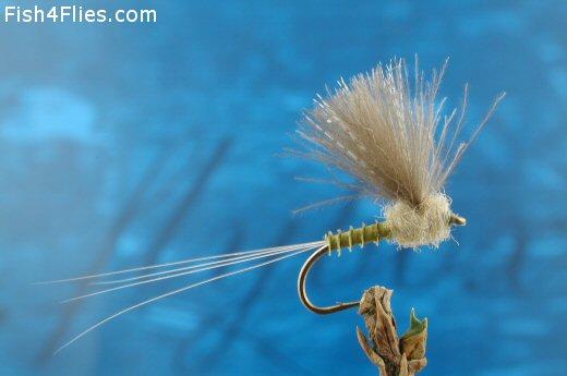 CDC Biot Comparadun Blue  Winged  Olive