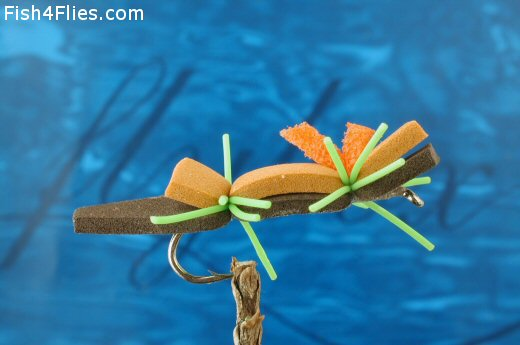 Chernoble Ant
