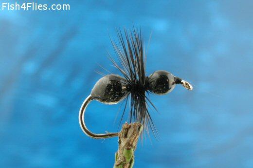 Black Transpar-Ant