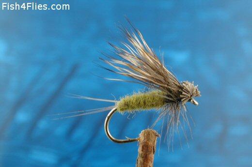 Blue Winged Hairwing Dun