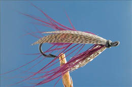 Purple Spey Fly