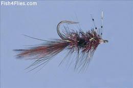 Alf Shrimp Rootbeer