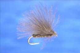 Grey CDC Caddis Fly