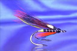 Thunder n Lightning JC BMD