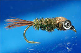 Bug Eyed Pheasant Tail