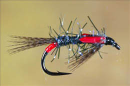 UV Straggle Black and Red Diawl Bach