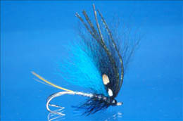 Blue Norseman