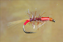 UV Straggle Fiery Brown Diawl Bach