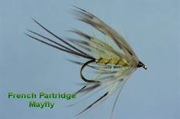 French Partridge Mayfly
