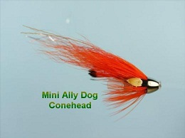 Mini Ally Dog Conehead