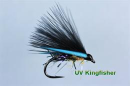 Kingfisher UV Cormorant