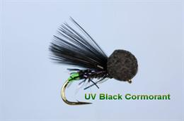 UV Black Cormorant Booby