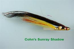 Cohn's Sunray Shadow JC Conehead