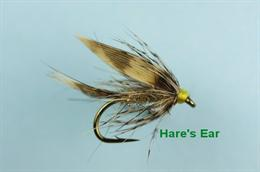 Gold Ribbed Hares Ear