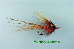 Murthly Marauder Shrimp