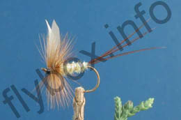 Flying Caddis