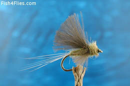 CDC Tailwater Dun Blue Winged Olive