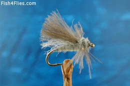 Grey CDC Adult Caddis